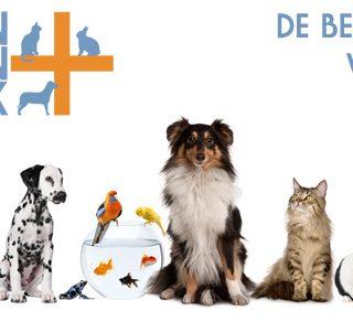 De gezondheid van je huisdier is belangrijk! Daarvoor zijn vaccinaties essentieel. Maak nu gebruik van de vaccinatie-aanbieding van Mijn Dierenkliniek uit Lisse en Hillegom