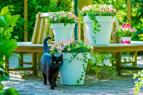 Greenhouse 30% korting op potten en vazen Bol van Voordeel